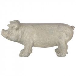 Suoliukas-kiaulė