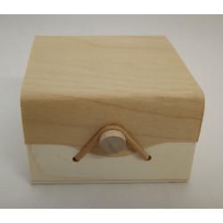 Dovanų-dėžutė